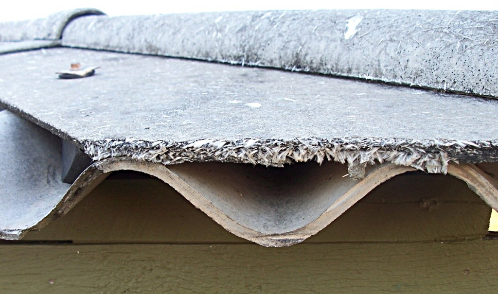 Asbestos Abatement Safety